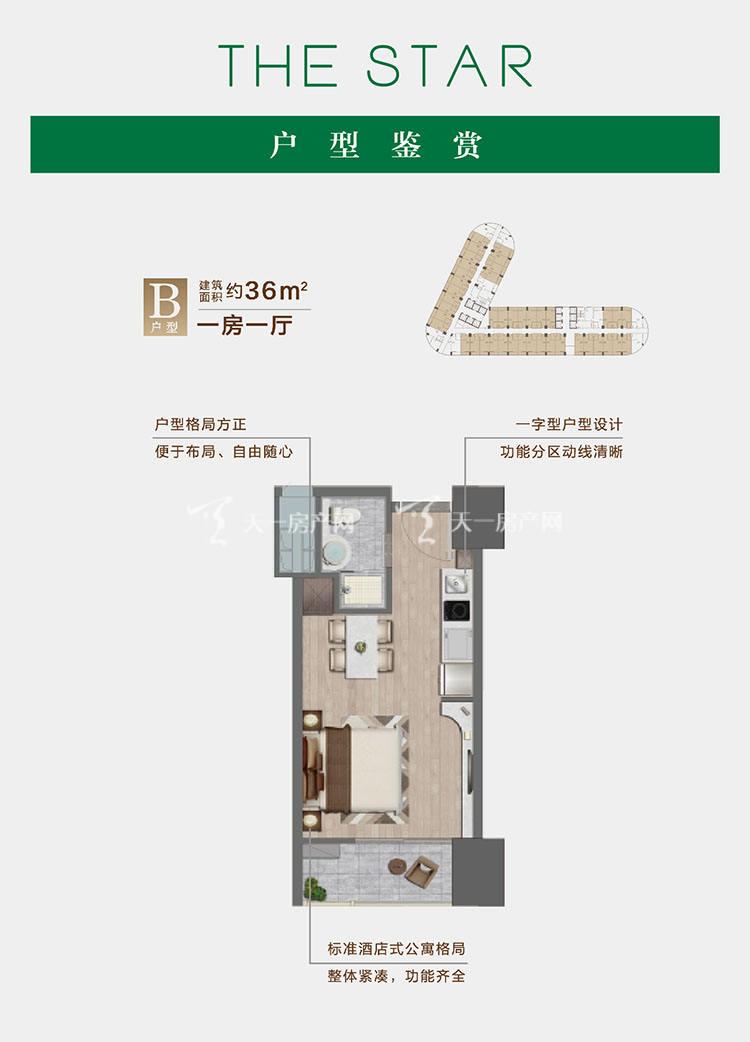 绿城西港之星B户型/1室1厅/建筑面积:约36㎡