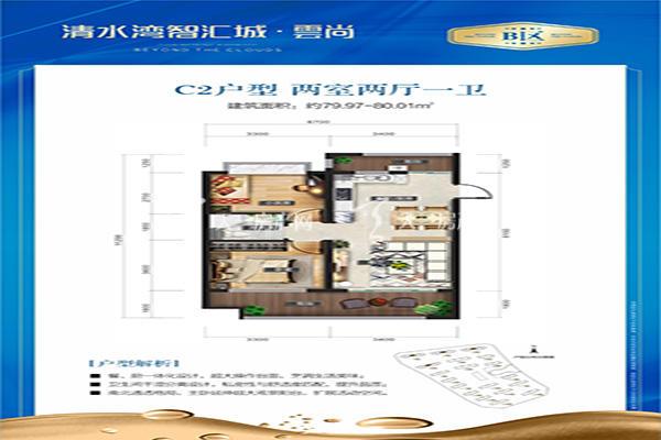 智汇城C2户型 两室两厅一卫 80㎡.jpg