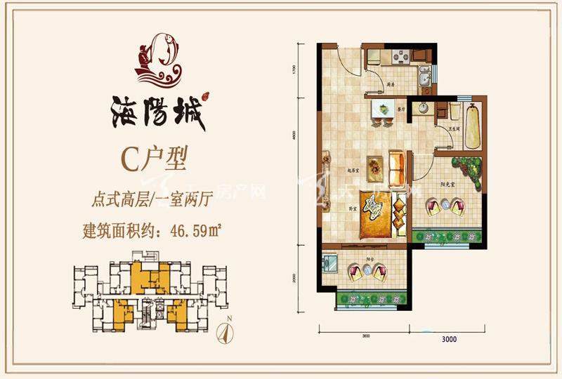 海阳城点式高层C户型1房2厅46.59㎡