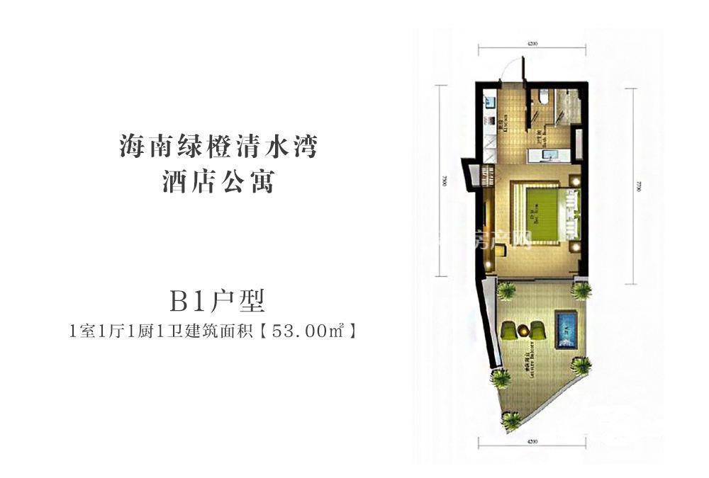 绿城蓝湾小镇海南绿城清水湾酒店公寓B1户型1室1厅1厨1卫建筑面积53㎡