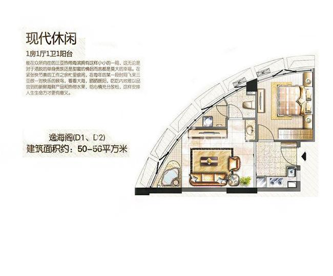 三亚金中海蓝钻 4#D1户型、D2户型 1房1厅1卫 56.00㎡.jpg