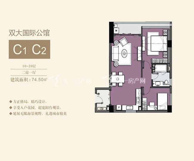 双大国际公馆 C1C2户型10-20层-2房1厅-74.50㎡.jpg