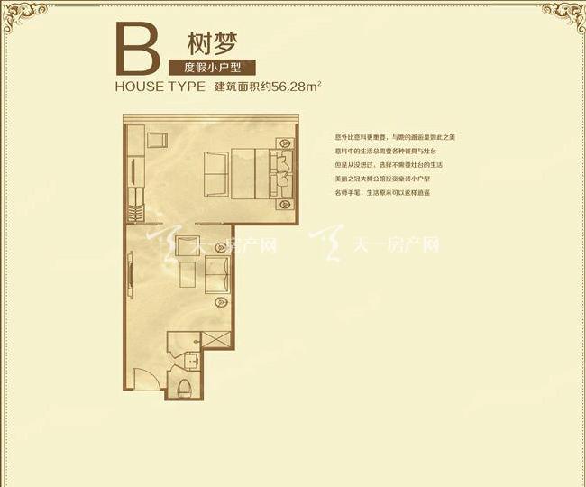 美丽之冠大树公馆 户型图 F栋B户型树梦 56.28㎡.jpg