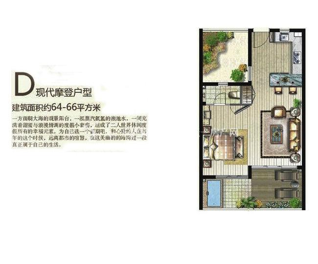 三亚金中海蓝钻 D户型 1房1厅1厨1问 66.00㎡.jpg