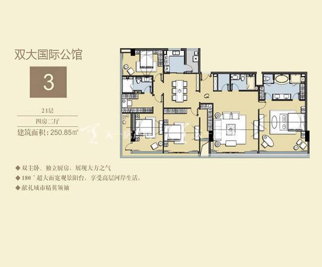 双大国际公馆 3户型21层-4房1厅-250.85㎡.jpg