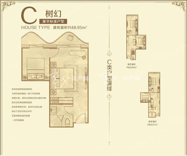 美丽之冠大树公馆 户型图 C户型树幻 48.95㎡.jpg