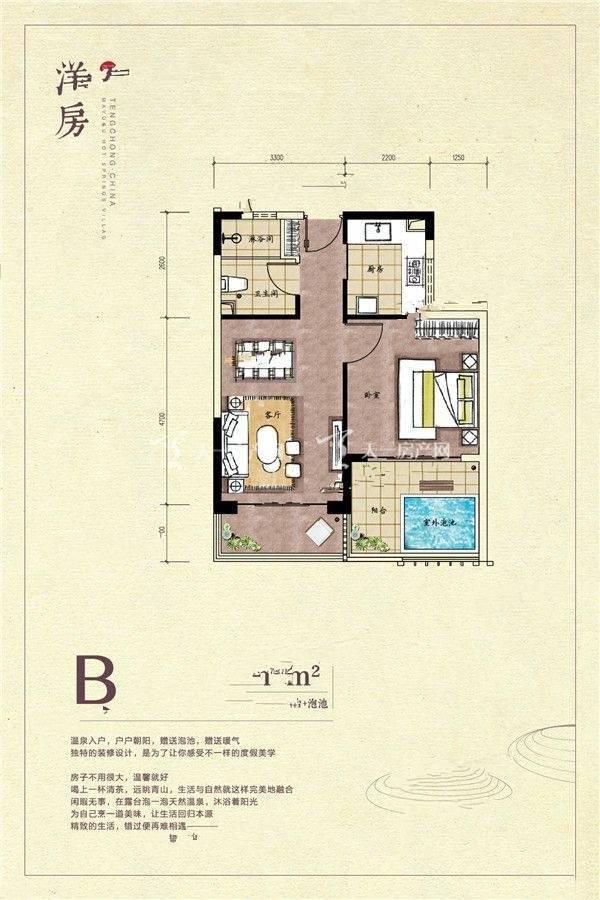 玛御谷温泉小镇 洋房B户型1室1厅1卫建面63㎡.jpg