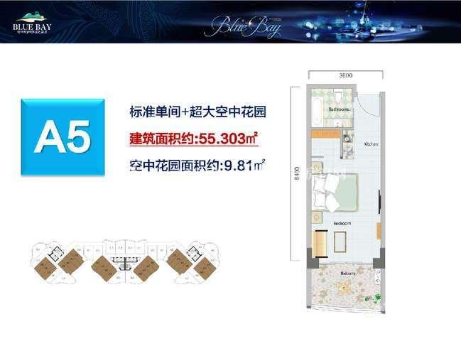 蓝色海湾-Blue bayA5建筑面积55.303㎡.jpg